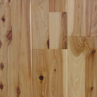Moxon Timbers Out of Australia Australian 2-strip Cypress