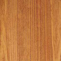 Bruce Coastal Woodlands Text Pine Natural 1 Strip